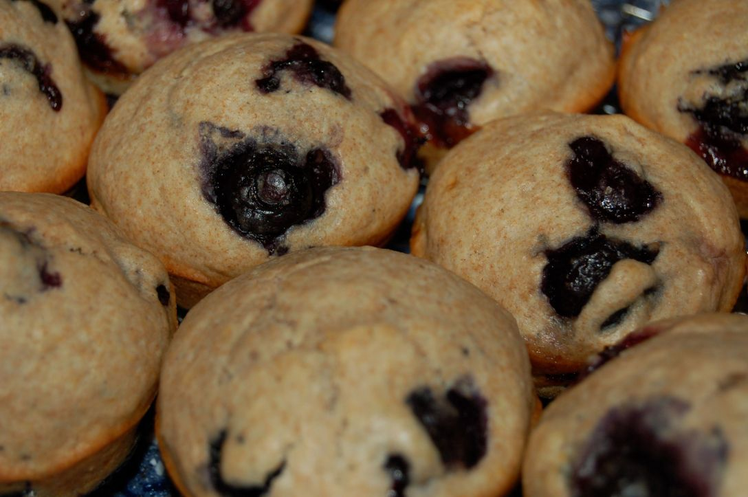 Blueberry Muffins by Andrea Badgley on Butterfly Mind