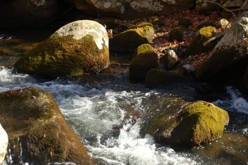 Mossy rocks in Little Stony Creek, Cascades Hike, Giles Co, VA by Andrea Badgley on Butterfly Mind