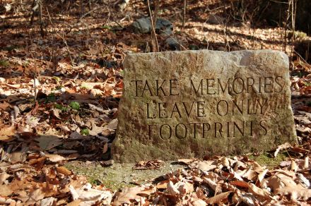 Stone Sign tinted green, Cascades Hike, Giles Co, VA by Andrea Badgley on Butterfly Mind