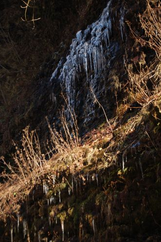 Icicles, Cascades Hike, Giles Co, VA by Andrea Badgley on Butterfly Mind