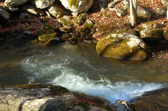 Little Stony Creek, Cascades Hike, Giles Co, VA by Andrea Badgley on Butterfly Mind