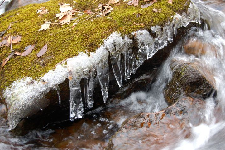 Icicles in Little Stony Creek by Andrea Badgley at Butterfly Mind