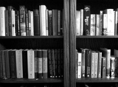 Organized bookshelves on andreabadgley.com black and white