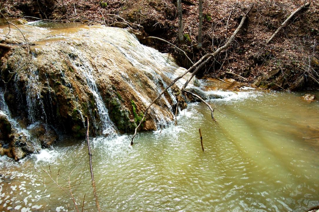 Spring fed Appalachian stream at Falls Ridge Preserve Blacksburg, Virginia on andreabadgley.com