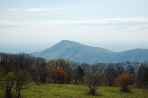 View of Old Rag Mountain from overlook on Skyline Drive in Shenandoah National ParK on andreabadgley.com