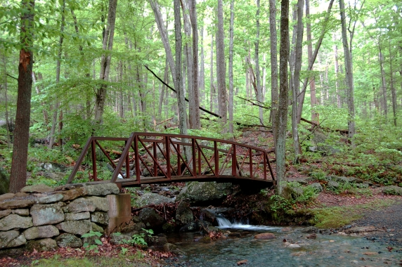 Bridge over Broken Back Run at trailhead of Old Rag Mountain, Shenandoah National Park on andreabadgley.com