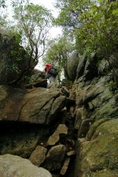 Rock scramble on Old Rag Mountain in Shenandoah National Park on andreabadgley.com
