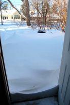 Minnesota Blizzard, December 11, 2010 on andreabadgley.com