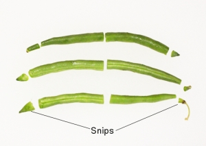 Green bean snips: the cut tips of green beans on andreabadgley.com