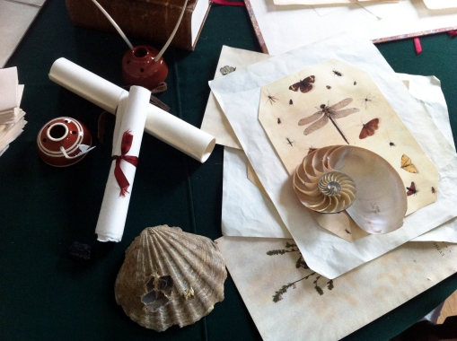 Collections of scholar/scientist George Wythe
