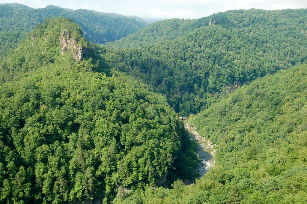 river gorge from Towers overlook, Breaks Interstate Park, VA on andreabadgley.com