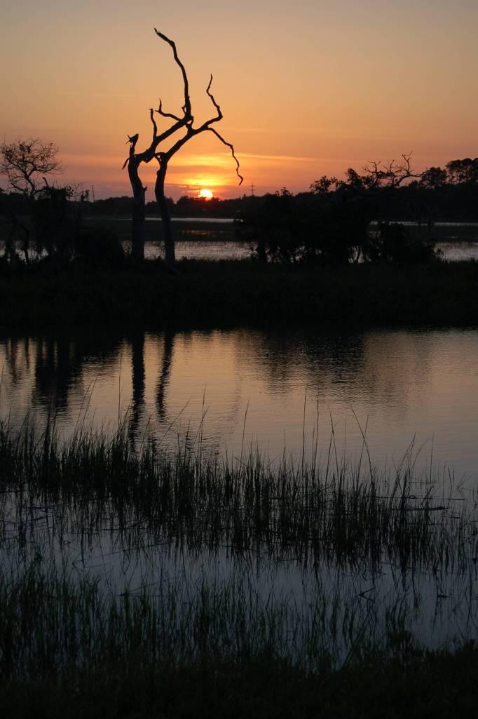 Sunset at Spanish Hammock, near Tybee Island Georgia by Andrea Badgley on Butterfly Mind