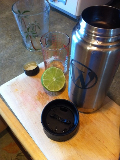 Making rum daiquiris with Klean Kanteen shaker by Andrea Badgley on Butterfly Mind