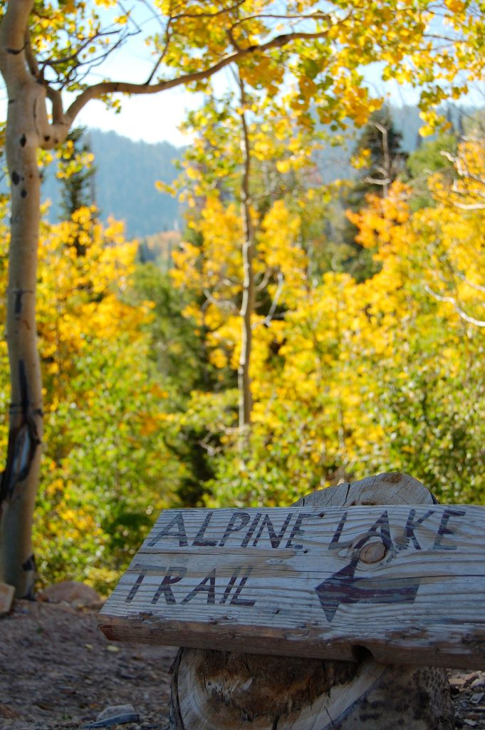 Alpine Lake Trail sign by Andrea Badgley on Butterfly Mind