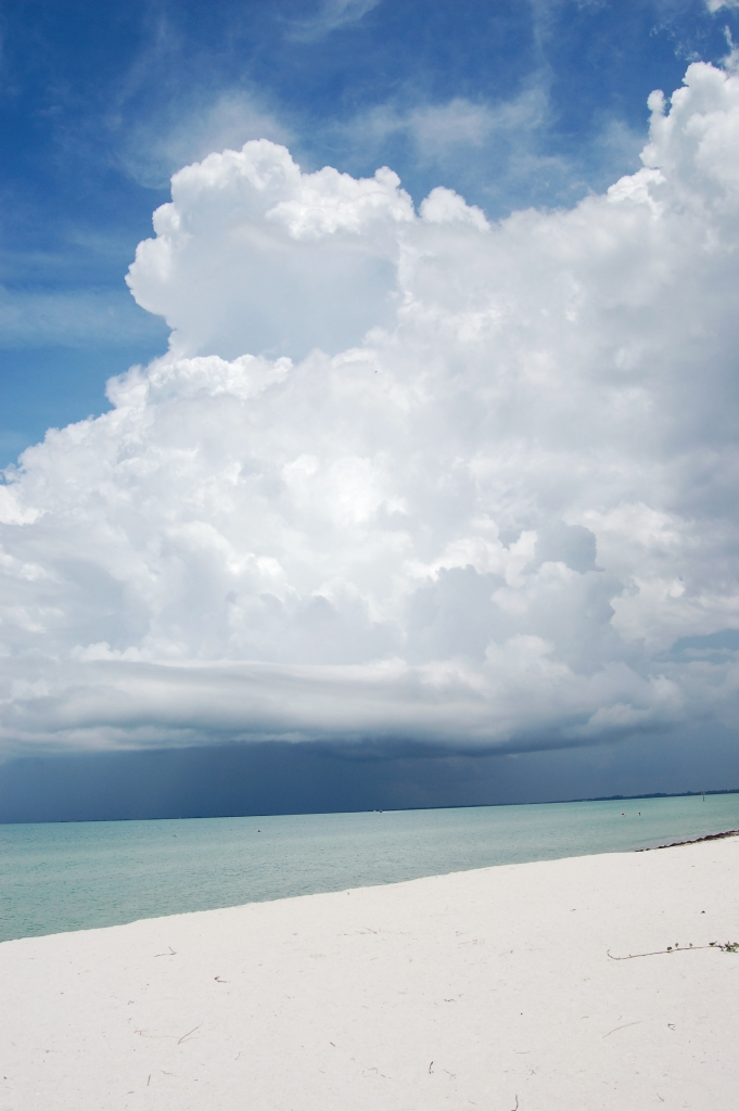 Cumulus clouds over the Gulf of Mexico Anna Maria Island, FL by Andrea Badgley on Butterfly Mind