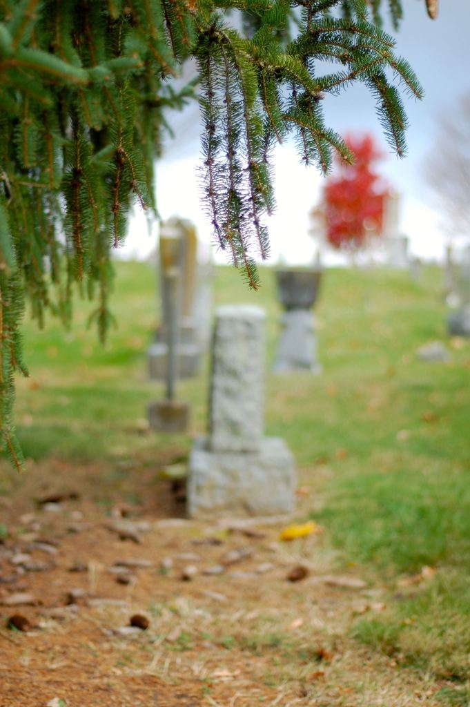 evergreen and tombstones
