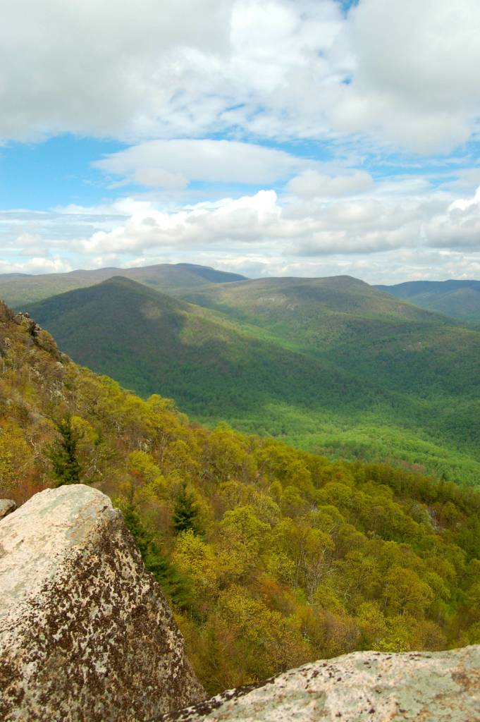 View from Old Rag in Shenandoah National Park by Andrea Badgley on Butterfly Mind