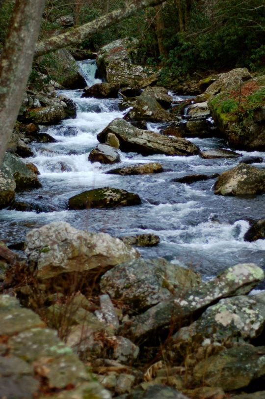 Riffles, Cascades hike by Andrea Badgley on Butterfly Mind