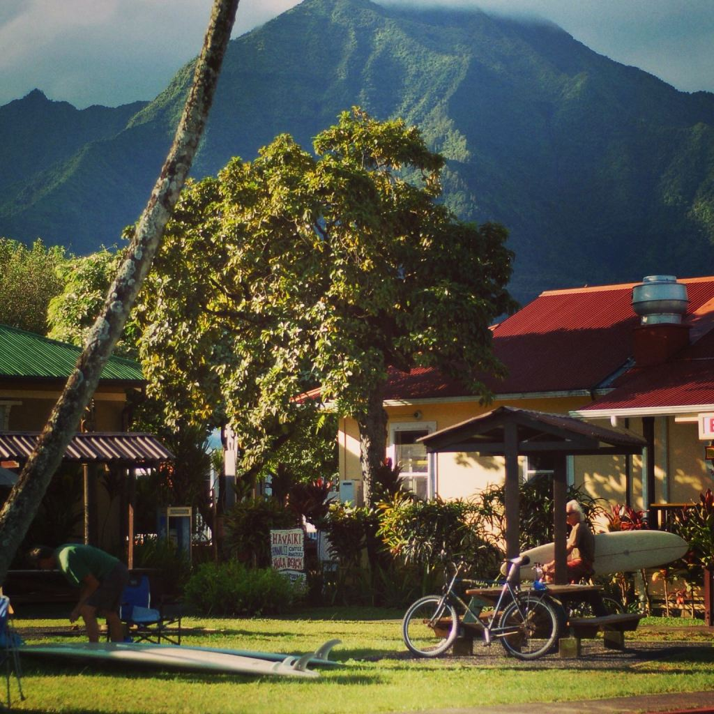 from Quicksilver in Hanalei, HI by Andrea Badgley at Butterfly Mind