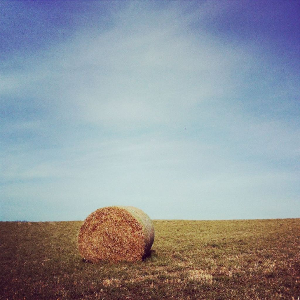 Hay bale by Andrea Badgley on Butterfly Mind
