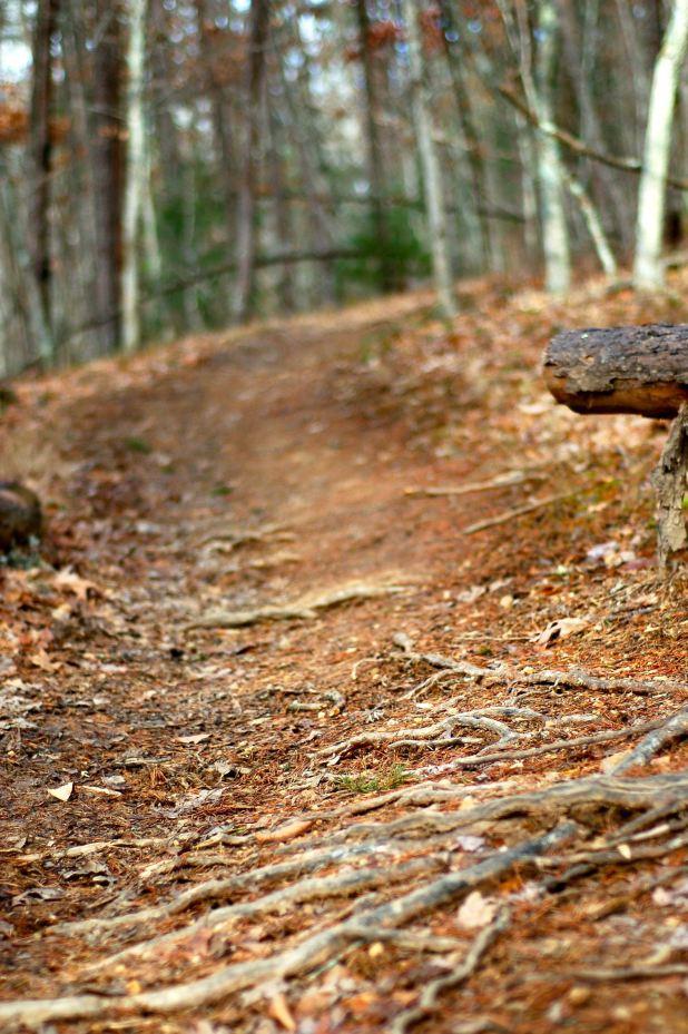 Poverty Creek Trail