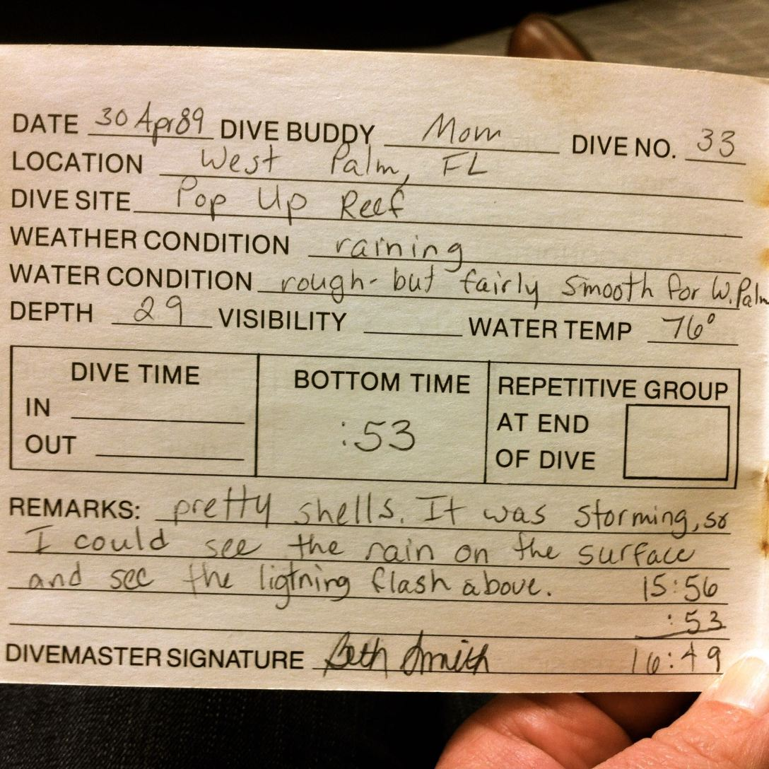 Badgley dive log, 1989