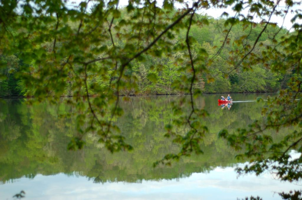 In a canoe, Fairy Stone Park, VA by Andrea Badgley on Butterfly Mind