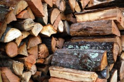 The firewood debacle