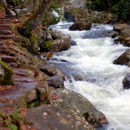 Streamside stairs