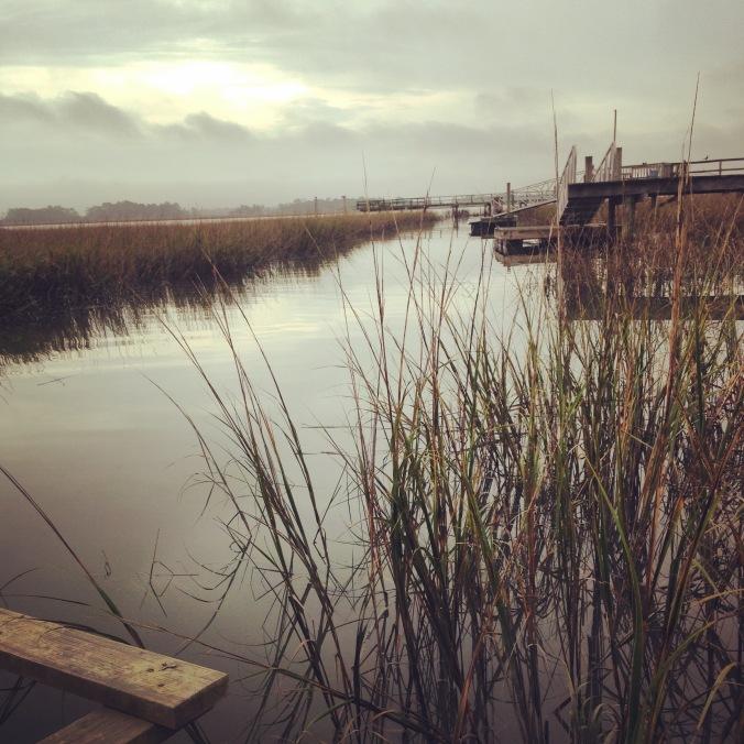 Marsh and tidal creek, coastal Georgia