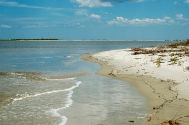 Beach on uninhabited barrier island of Georgia