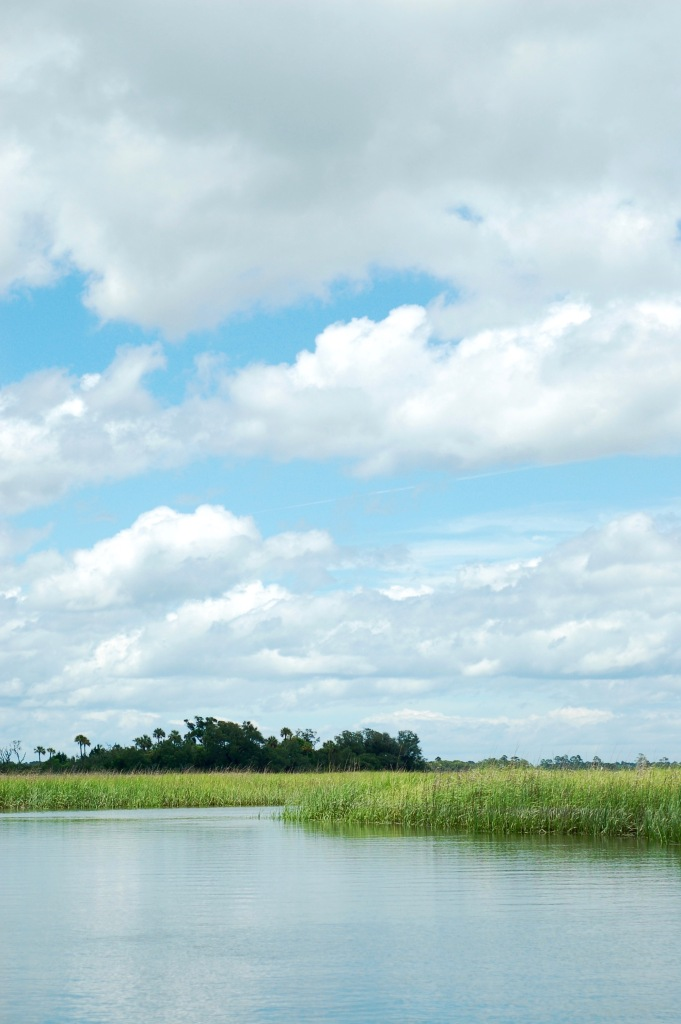 River and salt marsh with clouds