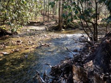 creek on St. Pat's
