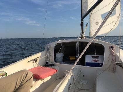 Egretta from the stern