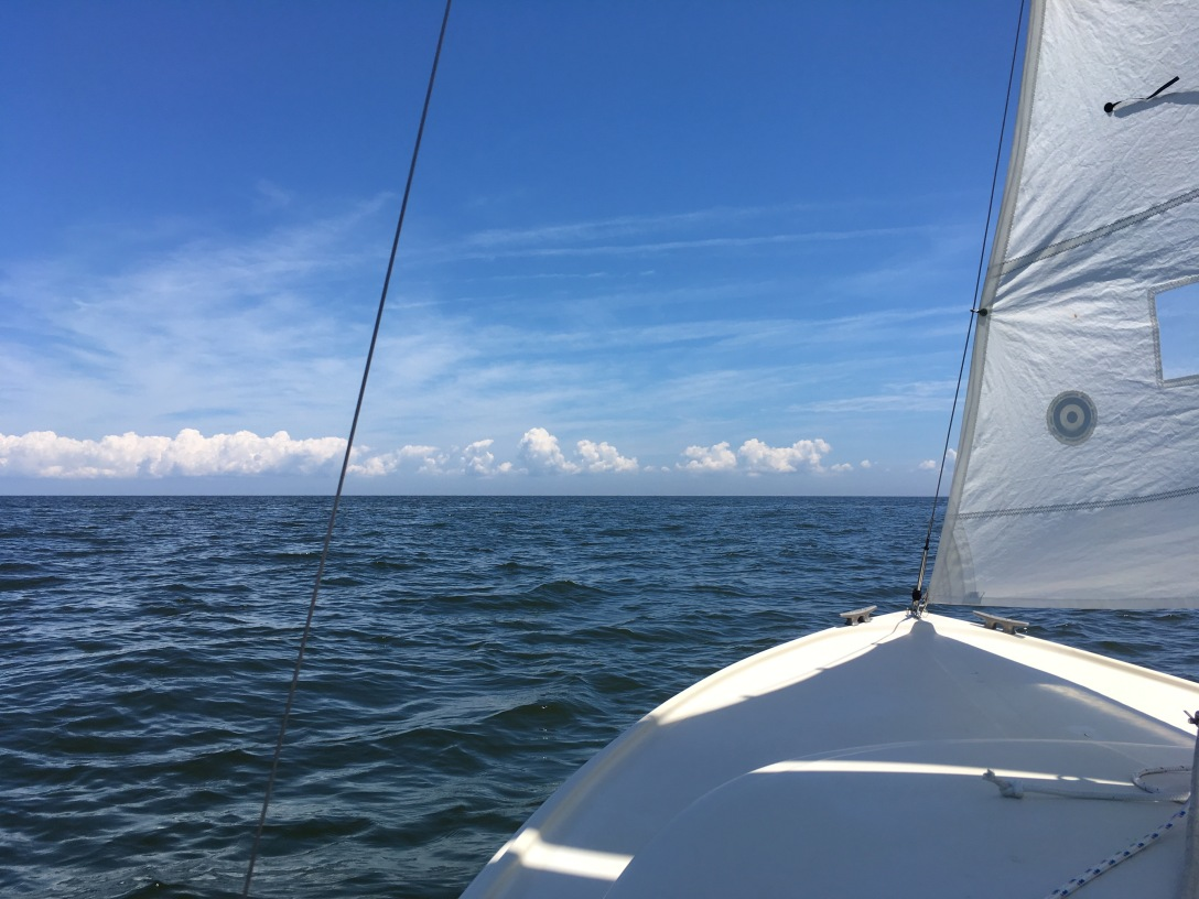 in the open water of the chesapeake_4124