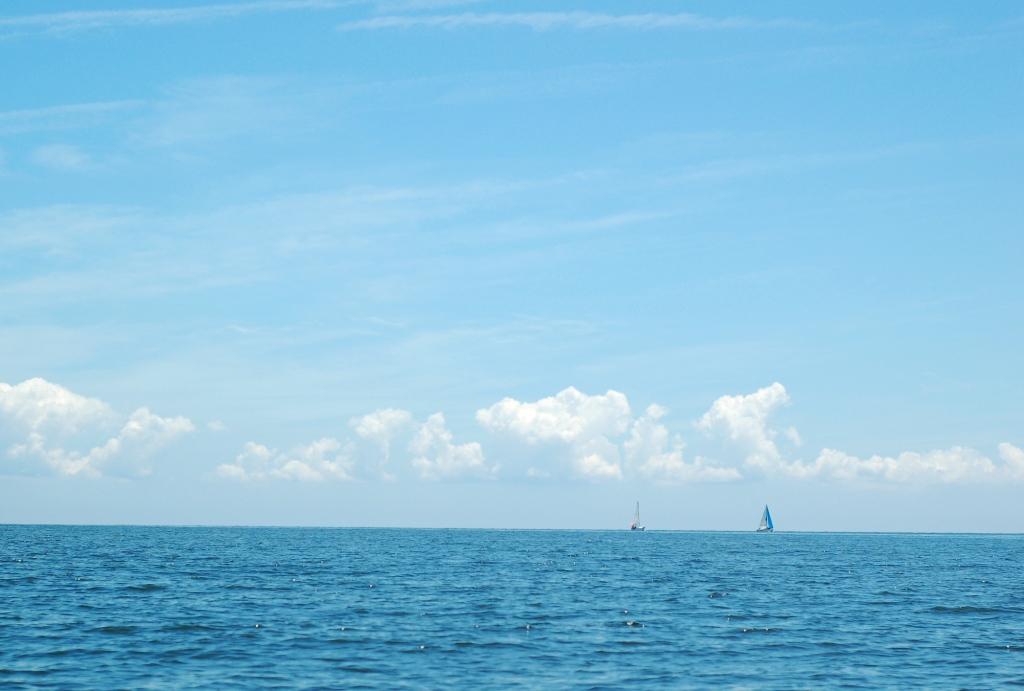 sailboats on the chesapeake 3