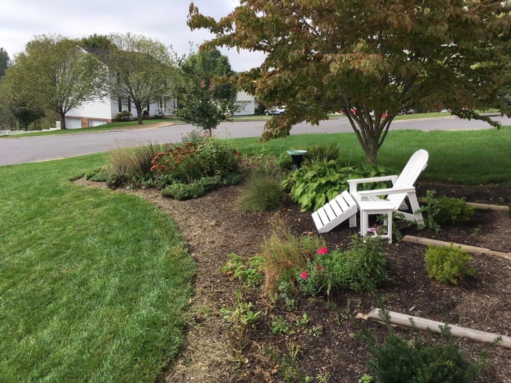 10 Oct front garden
