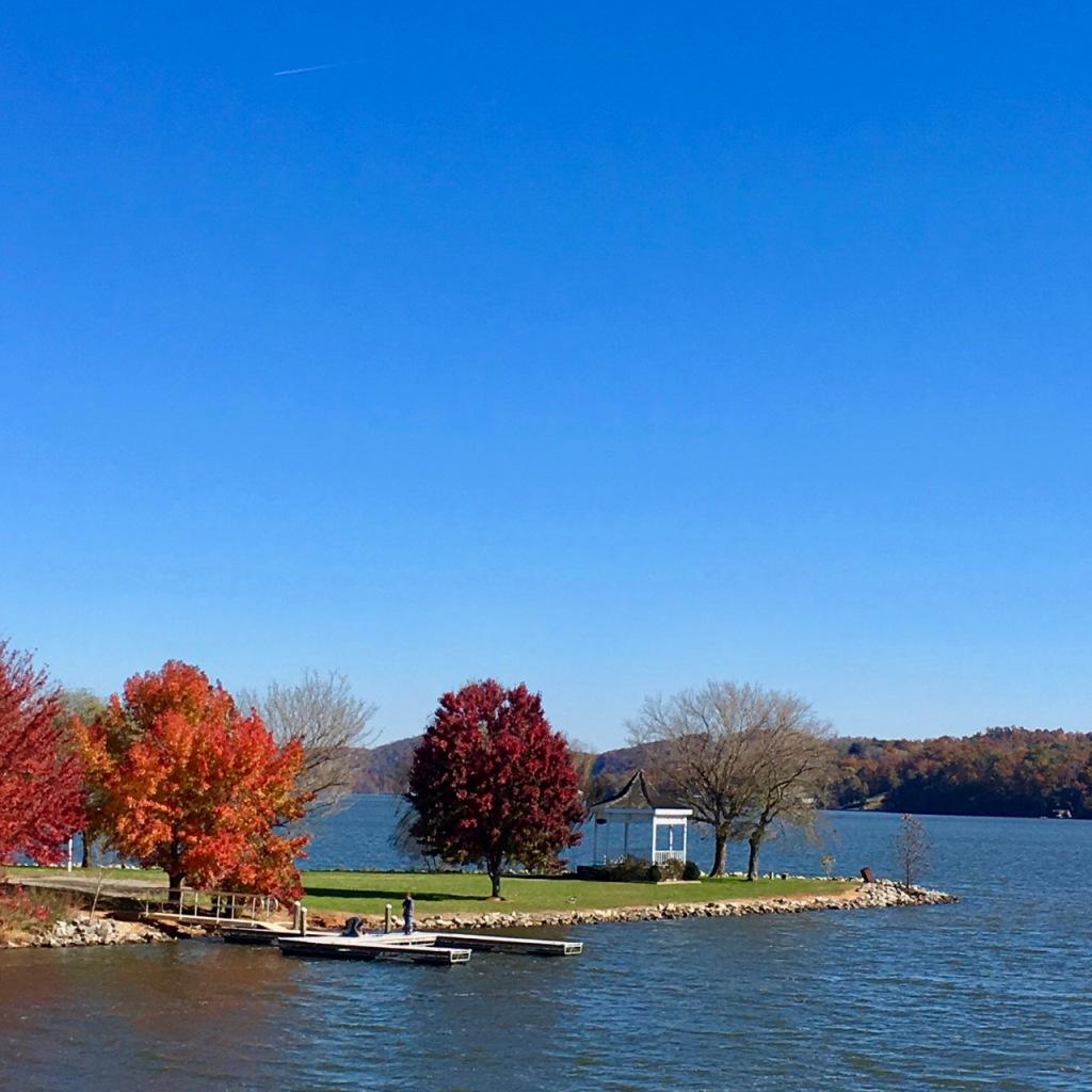 Bright autumn trees claytor lake november