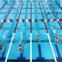 Love Letter to Swimming