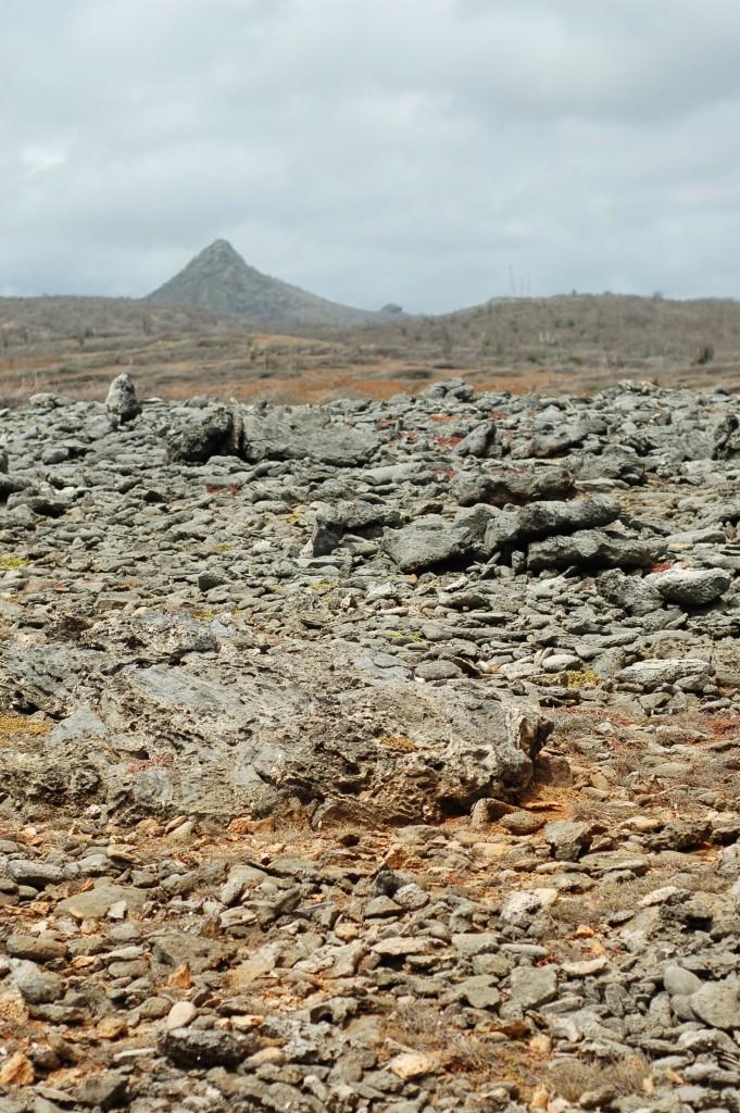 rockscape and mountain curacao shete boka_0086